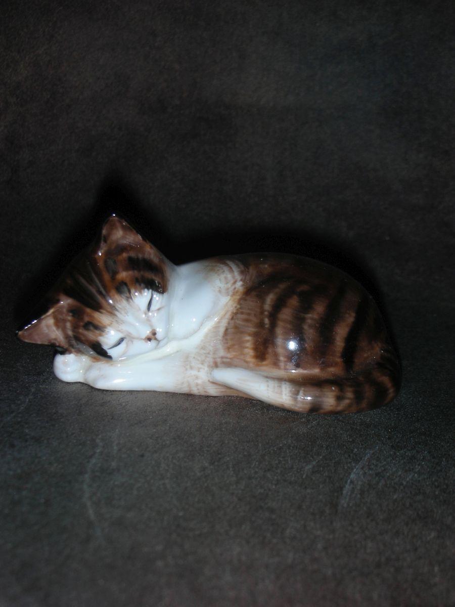 «Спящий котёнок»
